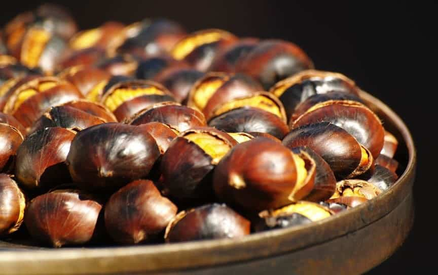Home » Christmas Stories » December 14 – Happy Roast Chestnut Day!