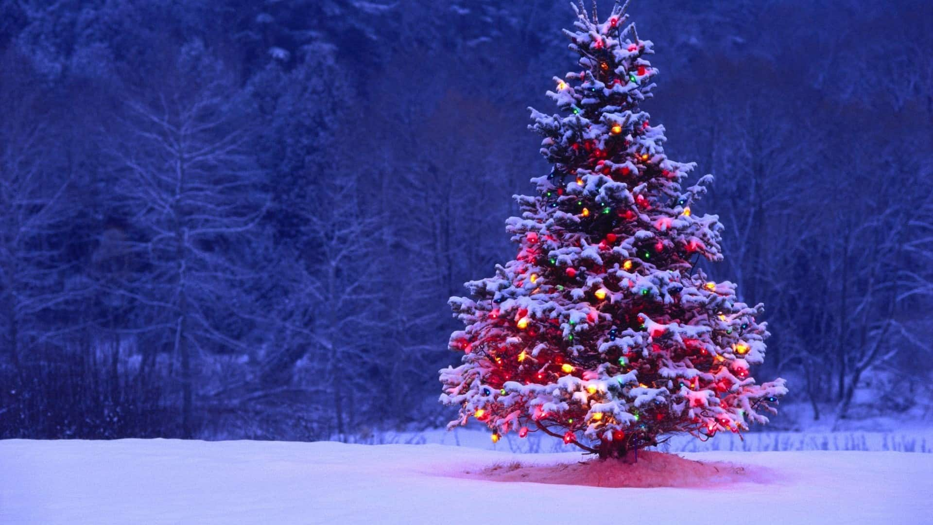 the christmas song lyric video