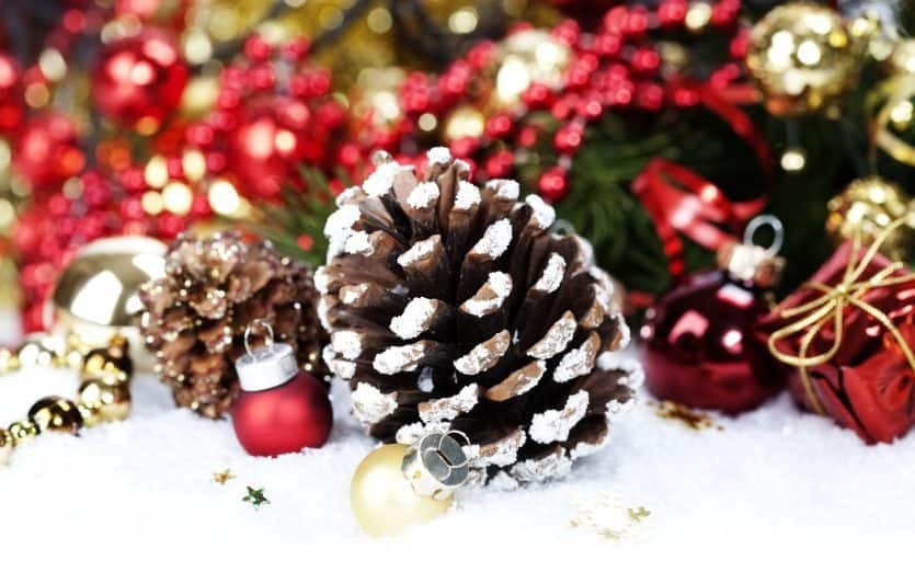 get decorating with these great christmas pine cones