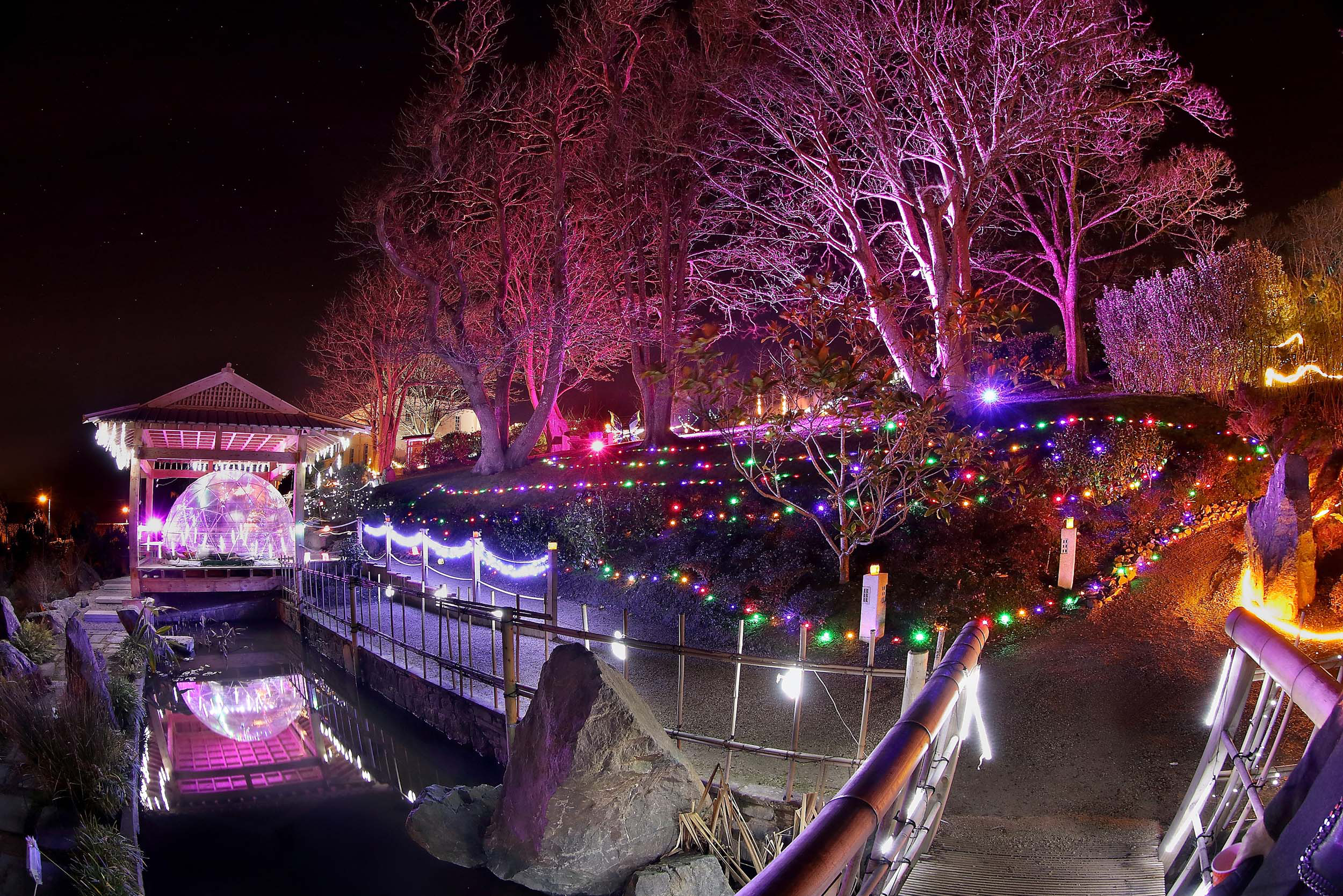Enchanted Garden Winter Light Festival