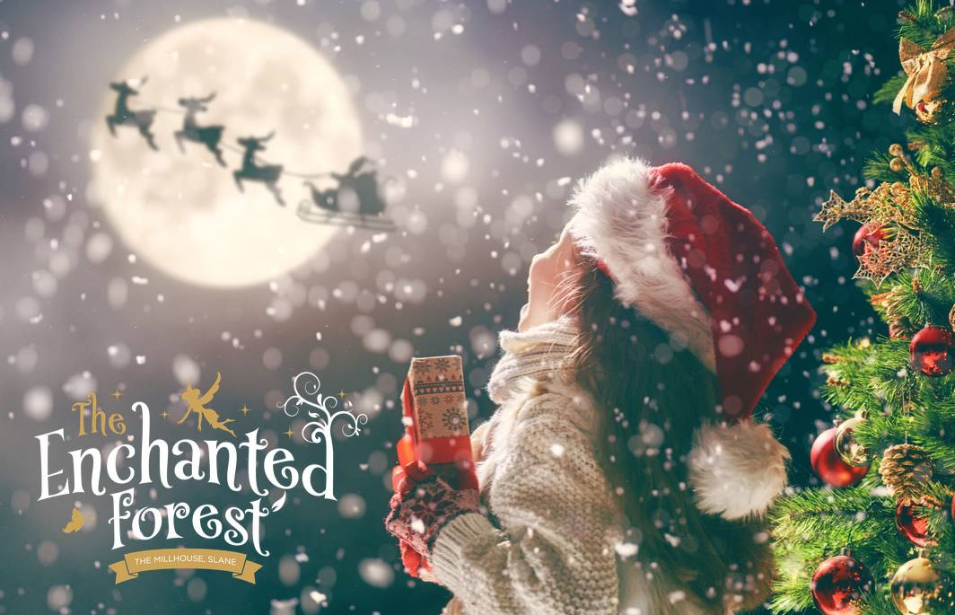The Enchanted Forest Santa Experience